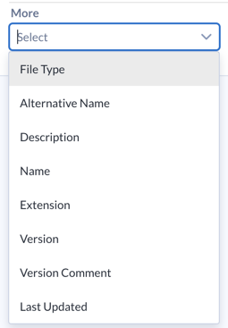 Screenshot showing the More drop-down menu for advanced filter options